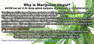 Marijuana Racism